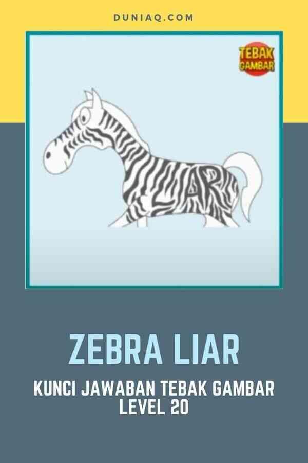 LEVEL 20 ZEBRA LIAR