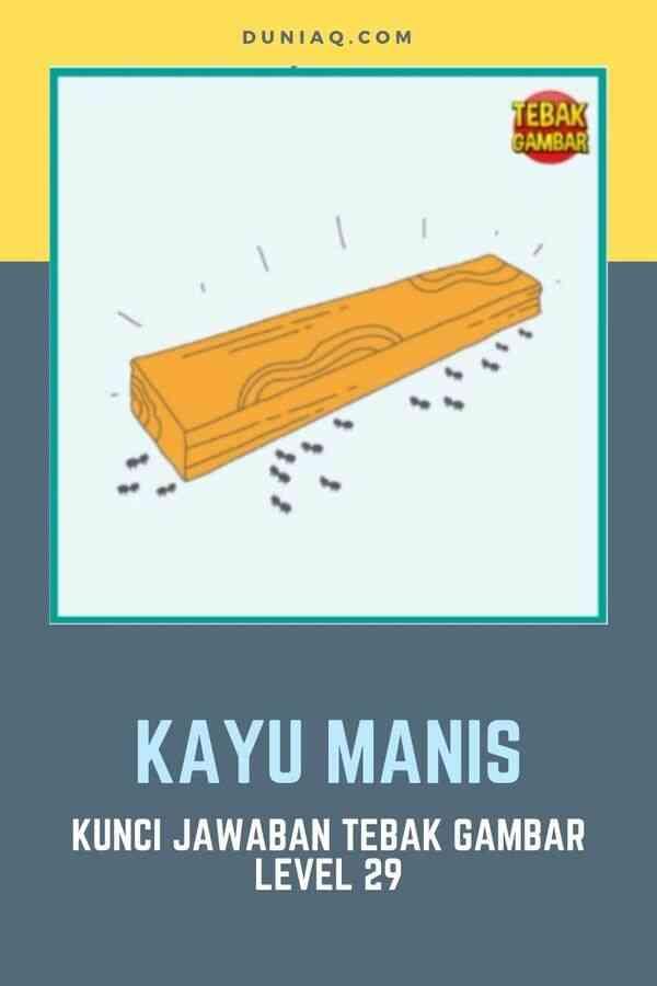 LEVEL 29 KAYU MANIS